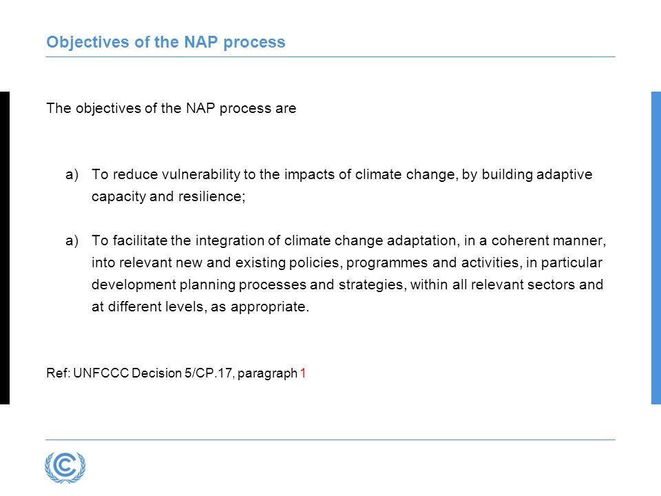 Objectives of the NAP process