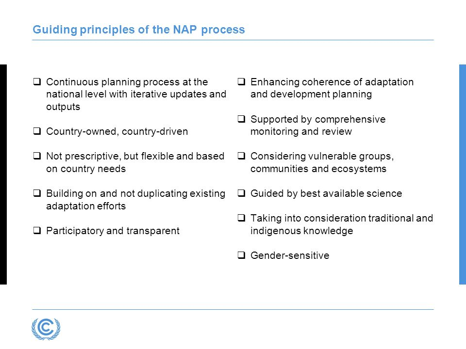 Guiding principles of the NAP process