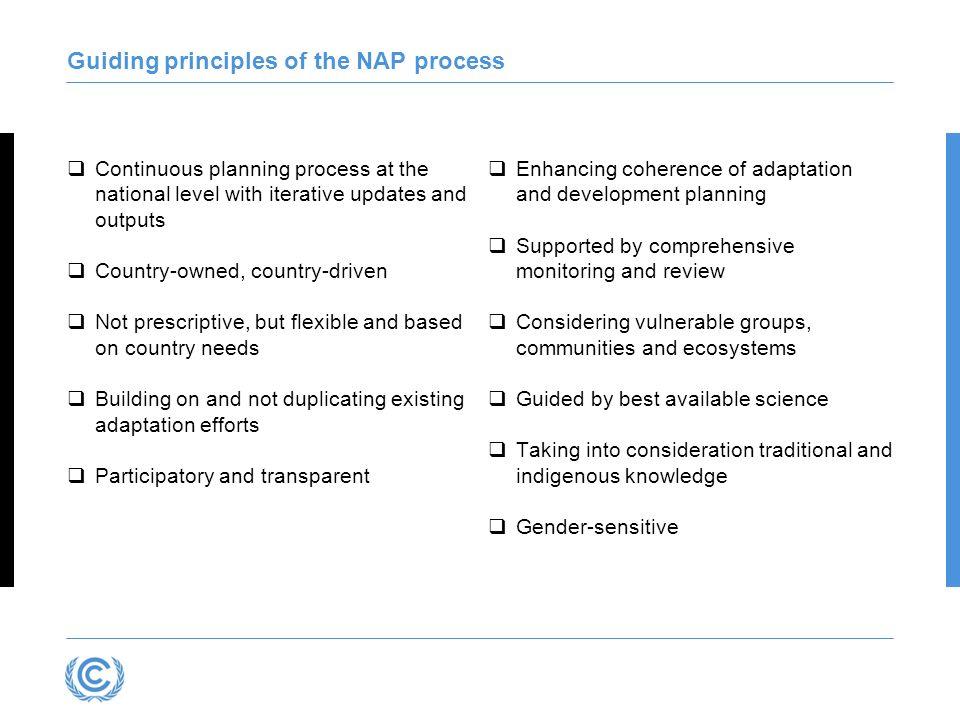 Guiding principles of the NAP process