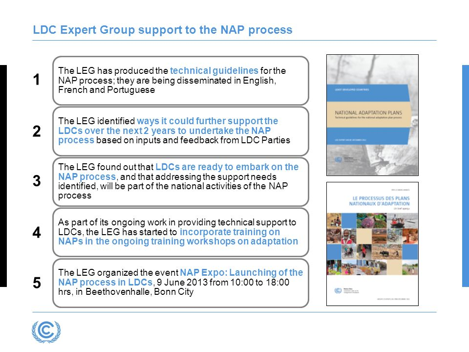 LDC Expert Group support to the NAP process
