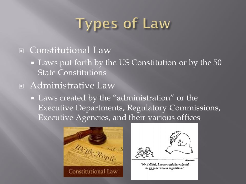constitutional and administrative laws Constitutional law judicial review administrative law is the body of law that governs the activities of administrative agencies of government government agency action can include rule making, adjudication, or the enforcement of a specific regulatory agenda.