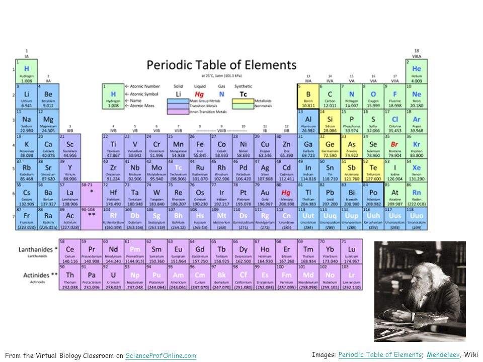 About science prof online ppt download 13 from the virtual biology classroom on scienceprofonline images periodic table of elements mendeleev wiki urtaz Gallery