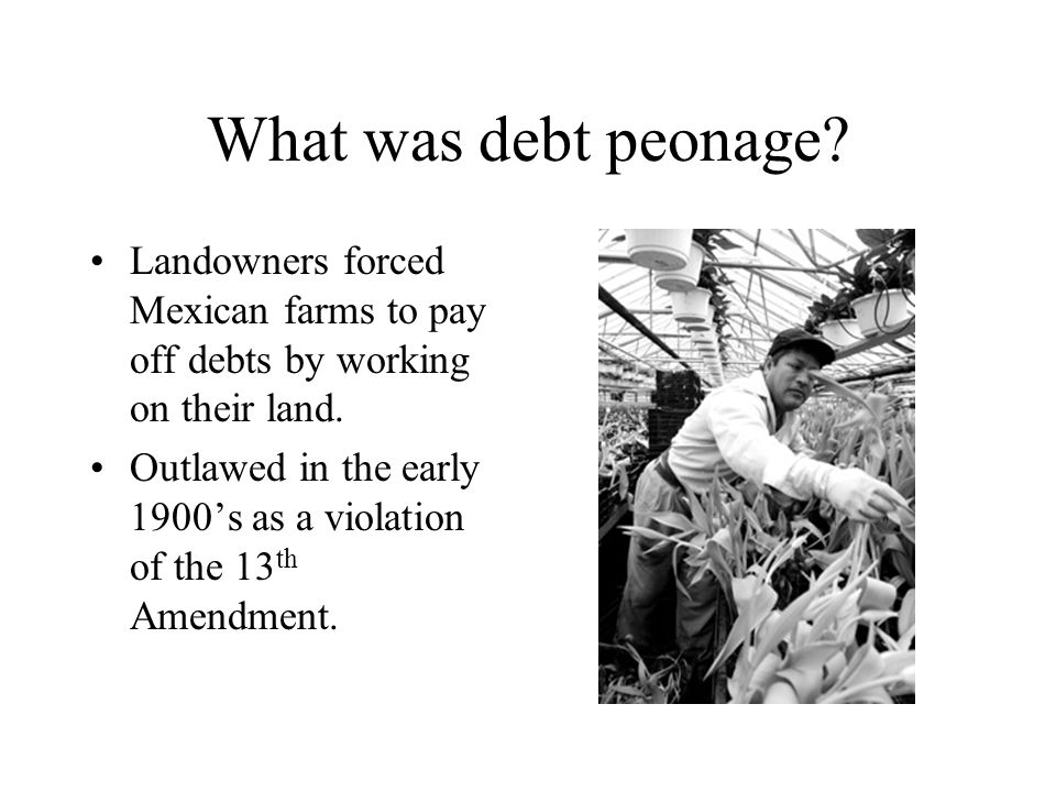 Chapter 16 life at the turn of the century ppt download - Small farming ideas that pay off ...