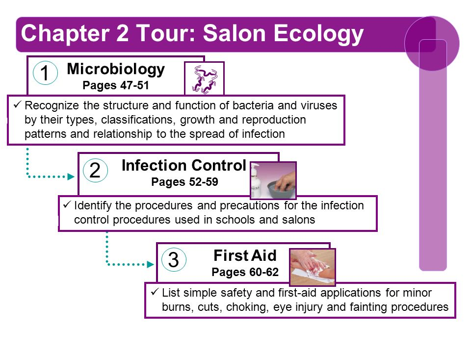 chapter 2 salon ecology ppt download