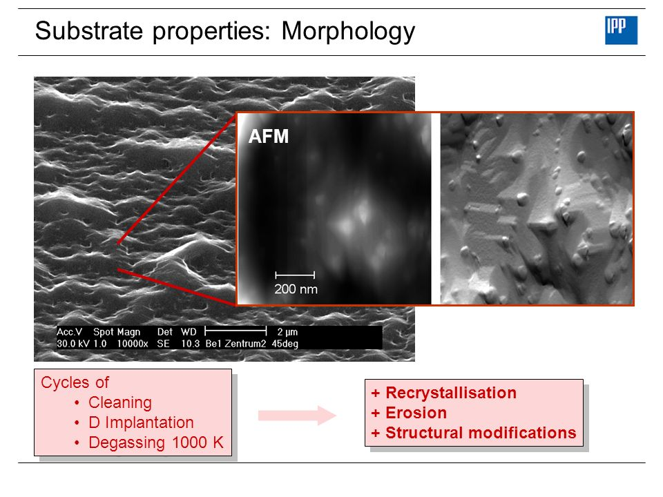 Substrate properties: Morphology