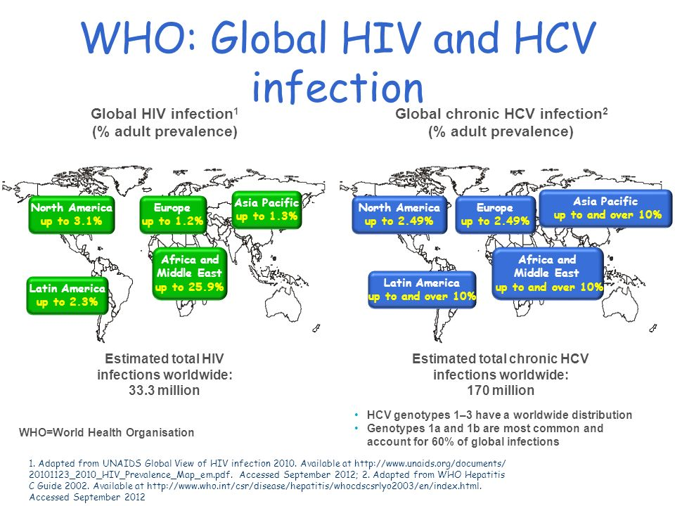 WHO: Global HIV and HCV infection