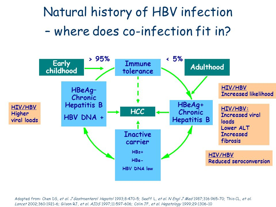 Natural history of HBV infection – where does co-infection fit in