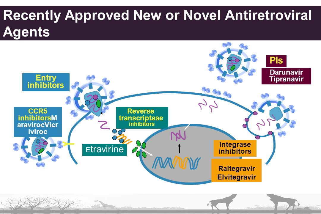Recently Approved New or Novel Antiretroviral Agents