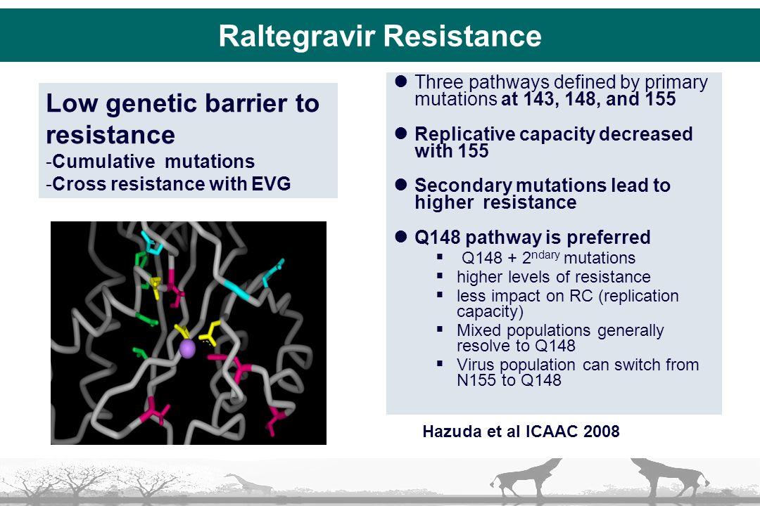 Raltegravir Resistance