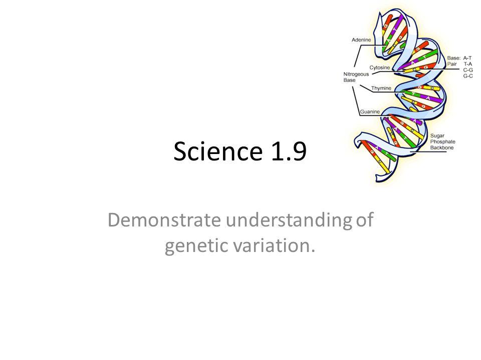 Demonstrate Understanding Of Genetic Variation Ppt Video Online