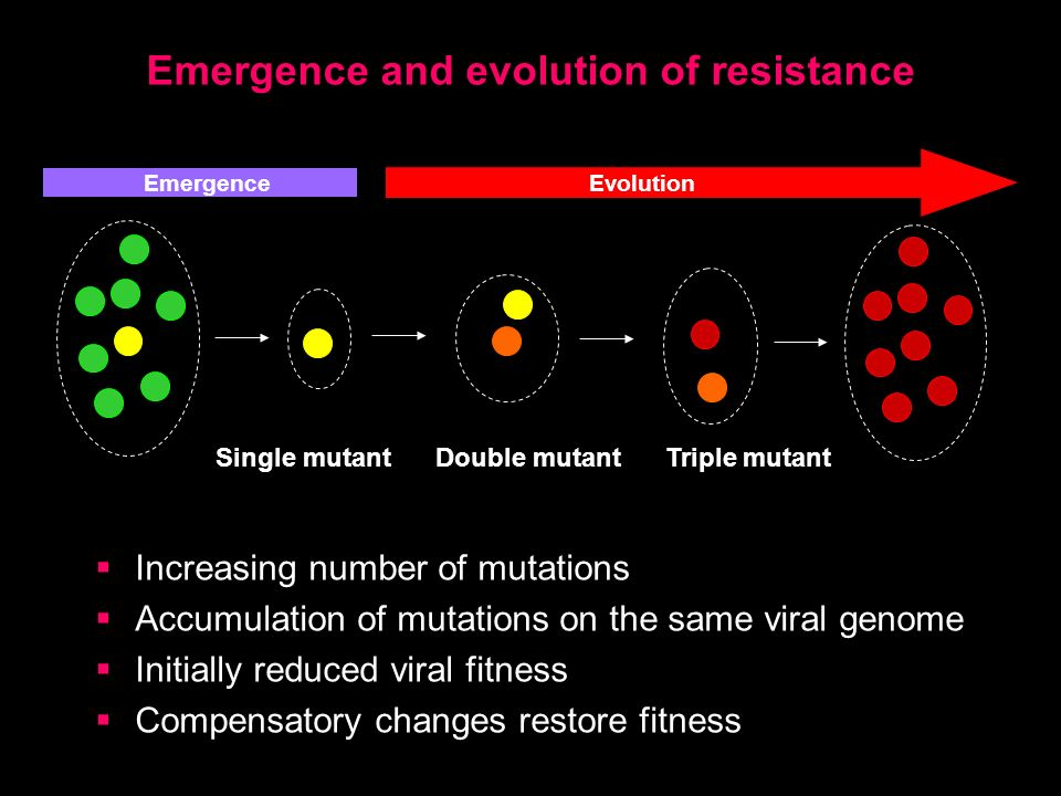 Emergence and evolution of resistance