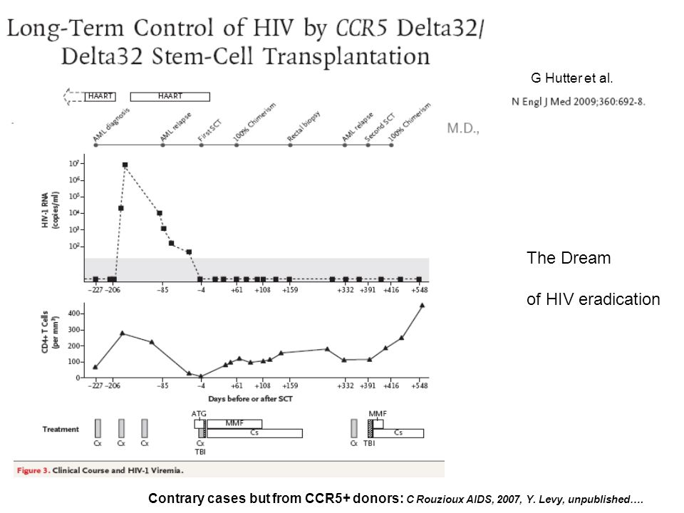 The Dream of HIV eradication G Hutter et al.