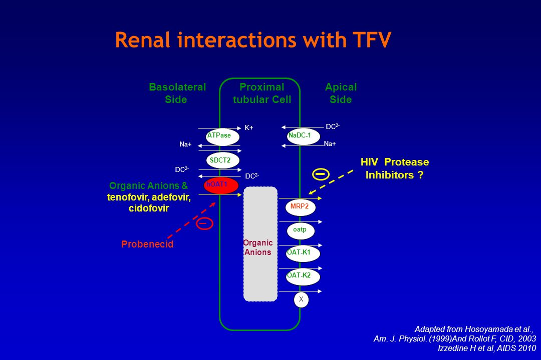 Renal interactions with TFV