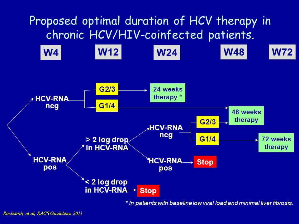 Proposed optimal duration of HCV therapy in chronic HCV/HIV-coinfected patients.