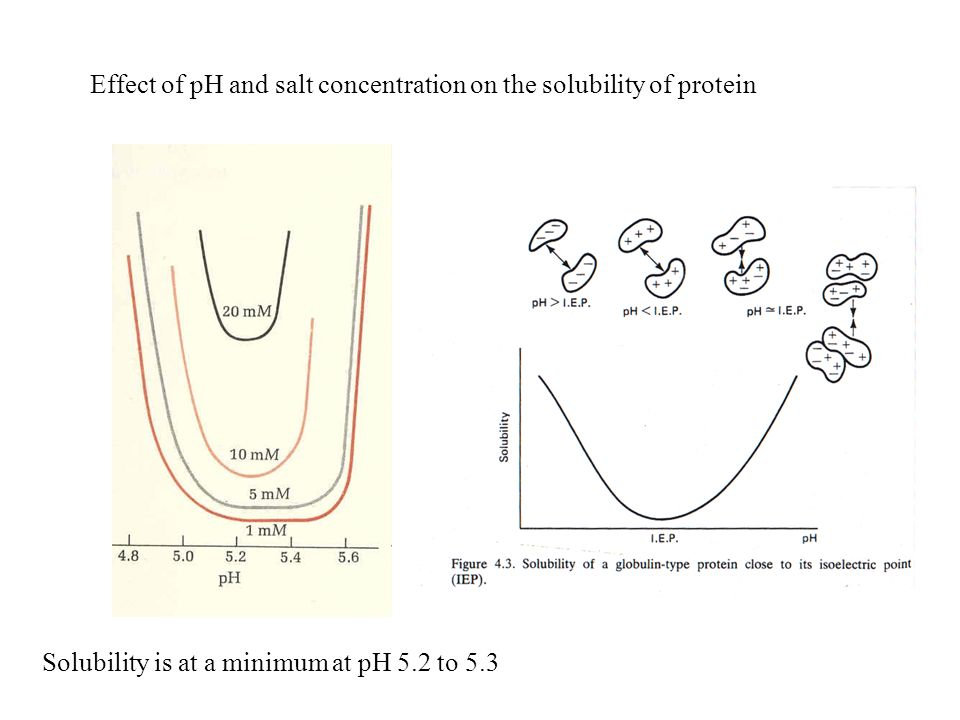 effect of different concentrations of salt Solution concentration the more concentrated a solution is, the higher the conductivity is  the effect of solution concentration on conductivity.