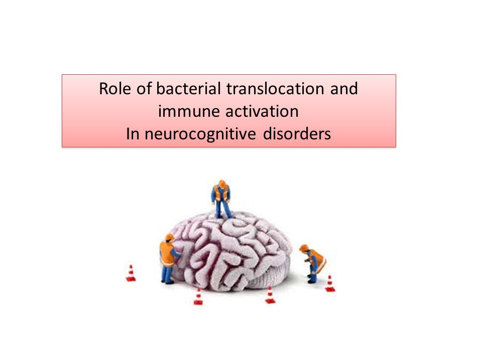 Role of bacterial translocation and immune activation