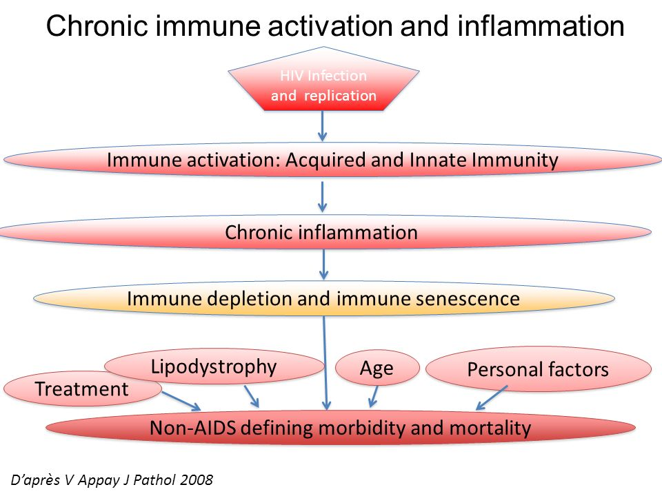 Chronic immune activation and inflammation