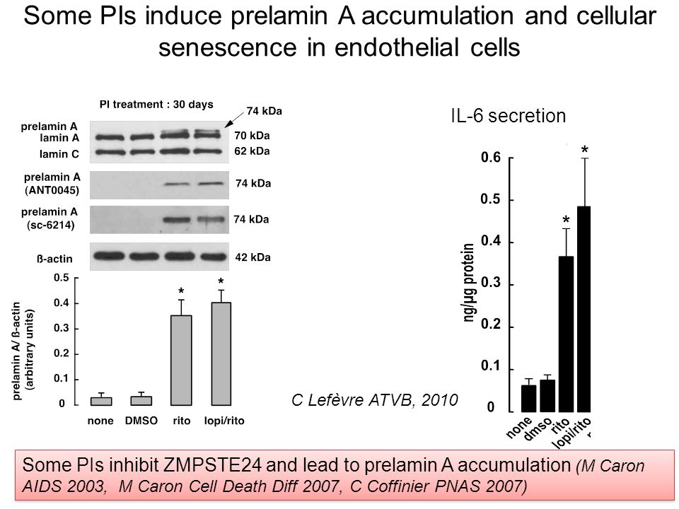Some PIs induce prelamin A accumulation and cellular senescence in endothelial cells