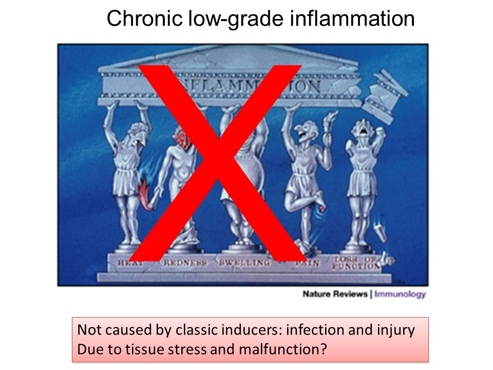 X Chronic low-grade inflammation