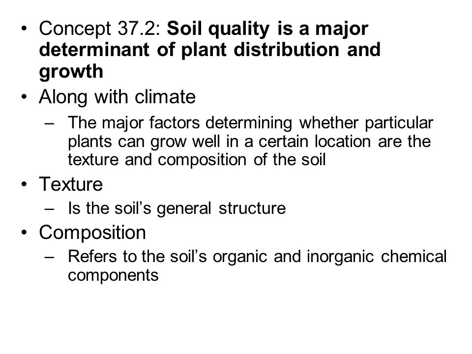 How Sunlight Affects The Distribution Of A Certain Plant Specie Essay Sample