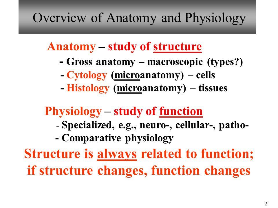 Único Anatomy And Physiology Exam 1 Review Regalo - Anatomía de Las ...