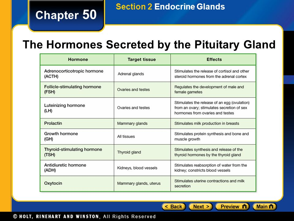 Chapter 50 Table Of Contents Section 1 Hormones Ppt Download
