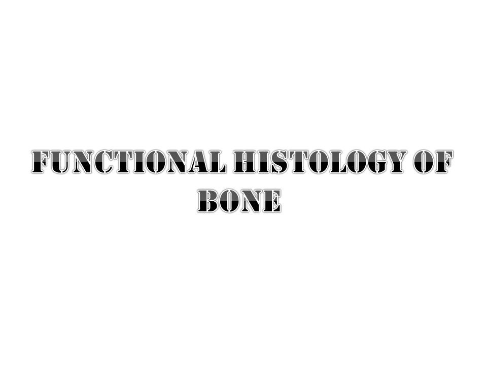 Functional histology of bone