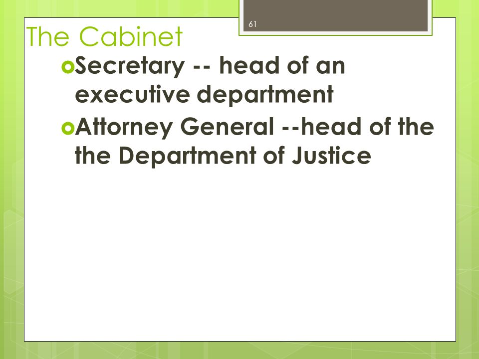 Executive Branch Chapter ppt download