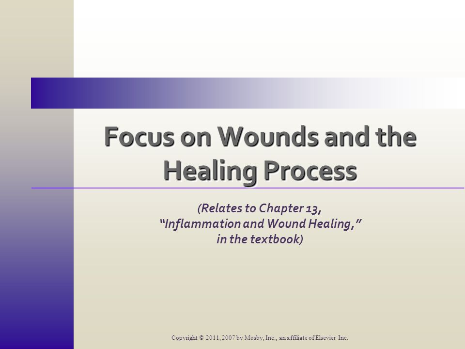 Focus on Wounds and the Healing Process