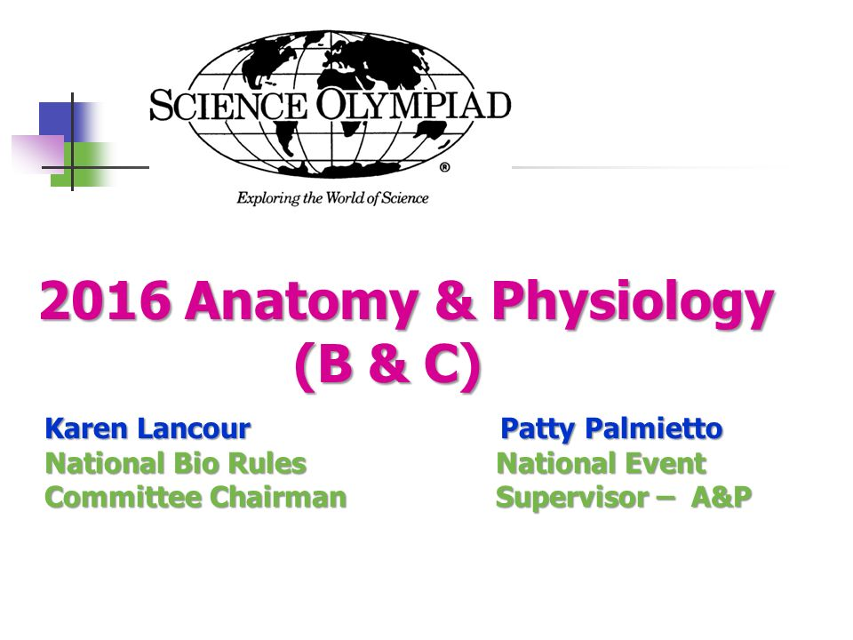 2016 Anatomy & Physiology (B & C) - ppt video online download