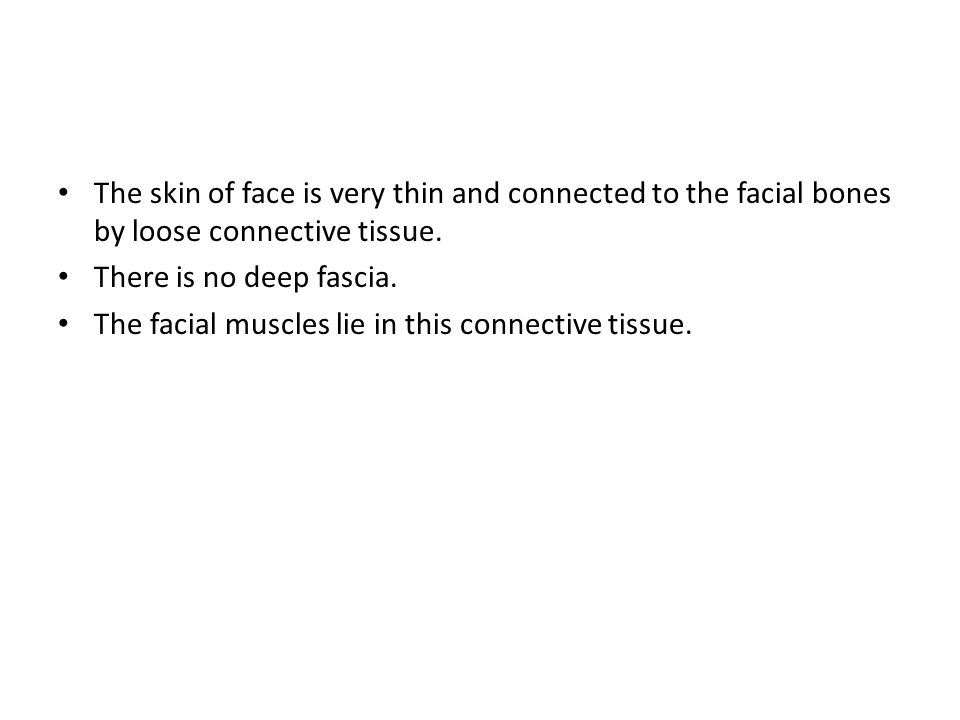The skin of face is very thin and connected to the facial bones by loose connective tissue.