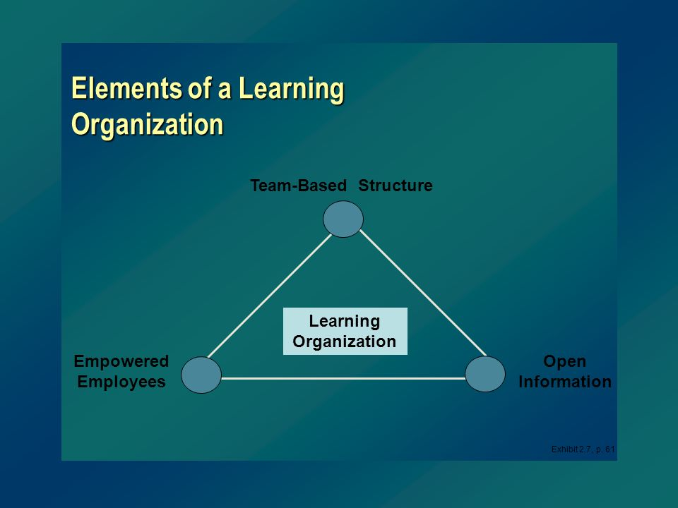Elements of a Learning Organization