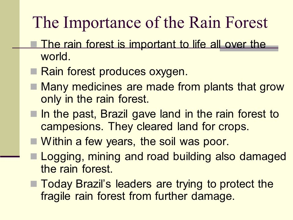 the importance of the rainforests Human impacts bibliography how are tropical rainforests cover a massive amount of the world's tree surface human exploration of the rainforest has yielded important medical progress for mankind, the tropical rainforest's diverse climate has allowed for an extremely diverse biome.