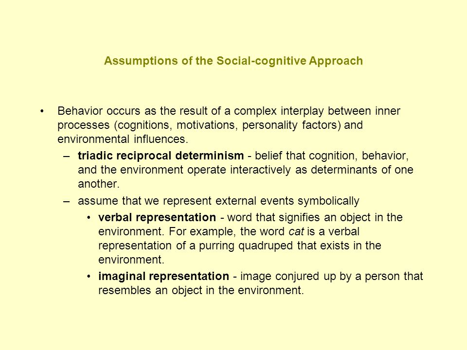 Assumptions of the Social-cognitive Approach