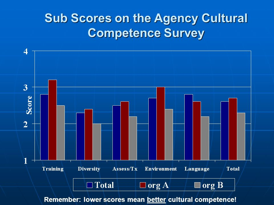 Sub Scores on the Agency Cultural Competence Survey