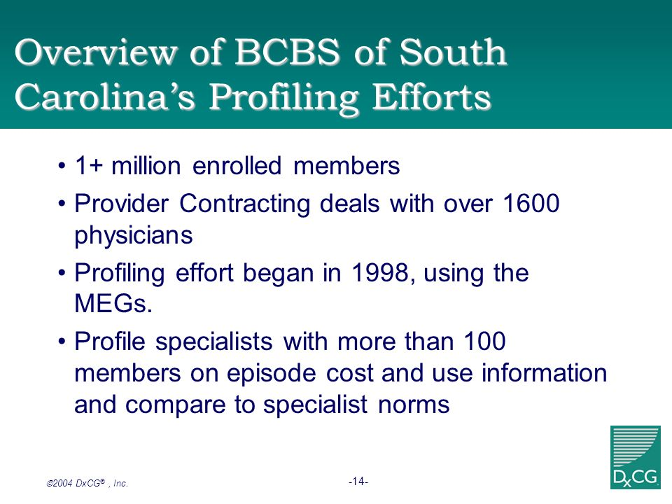 Overview of BCBS of South Carolina's Profiling Efforts