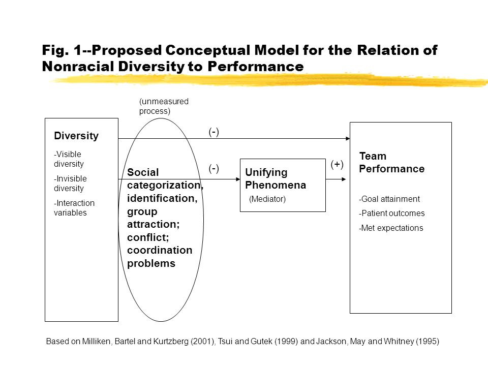 Fig. 1--Proposed Conceptual Model for the Relation of Nonracial Diversity to Performance