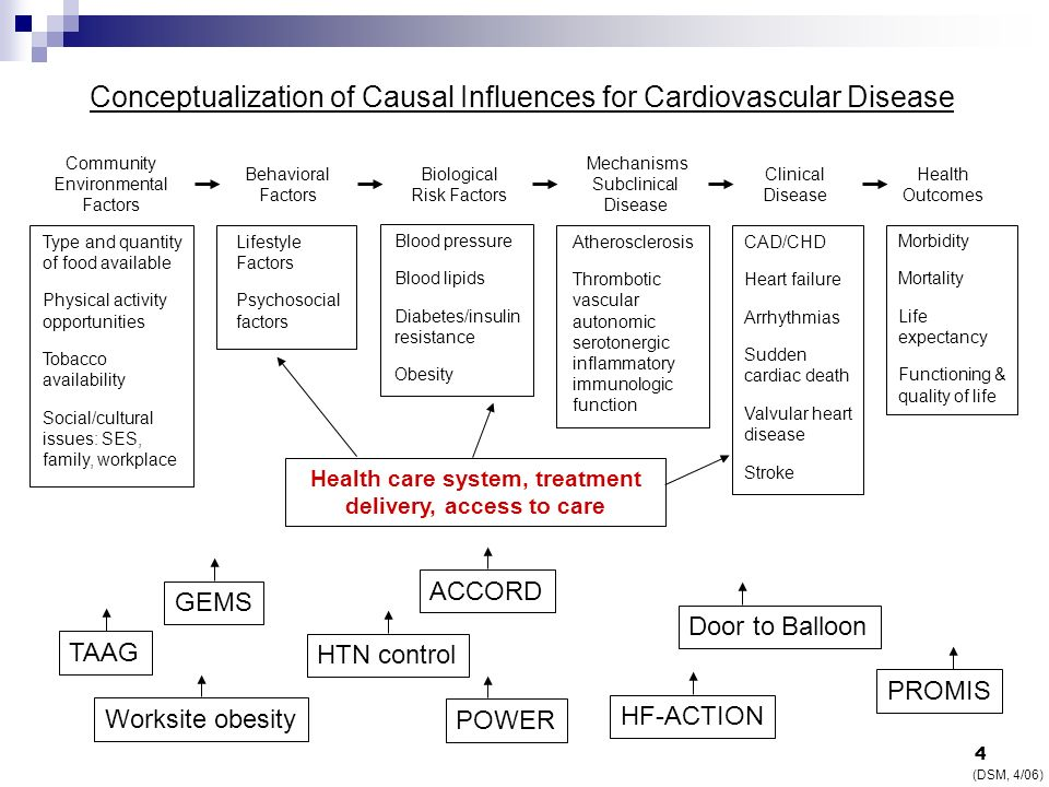 Conceptualization of Causal Influences for Cardiovascular Disease