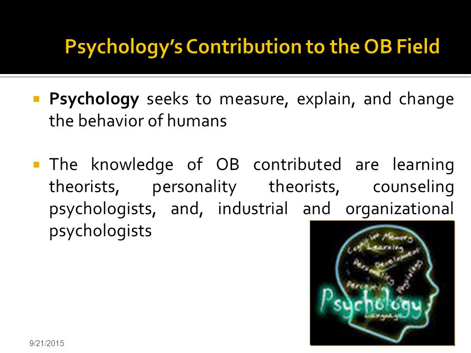 Psychology's Contribution to the OB Field