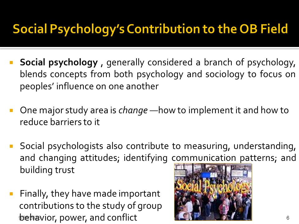 Social Psychology's Contribution to the OB Field