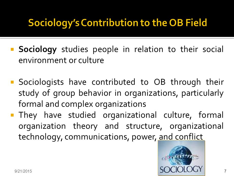 Sociology's Contribution to the OB Field