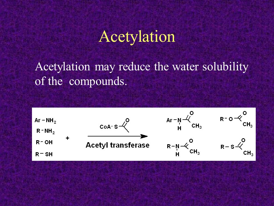 Acetylation Acetylation may reduce the water solubility