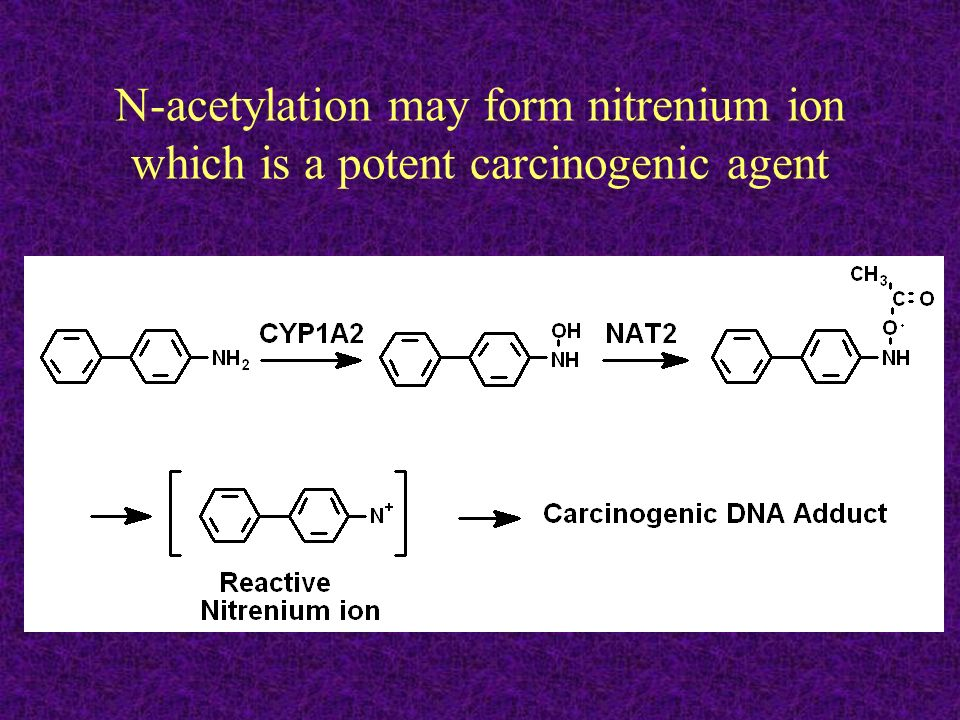 N-acetylation may form nitrenium ion which is a potent carcinogenic agent