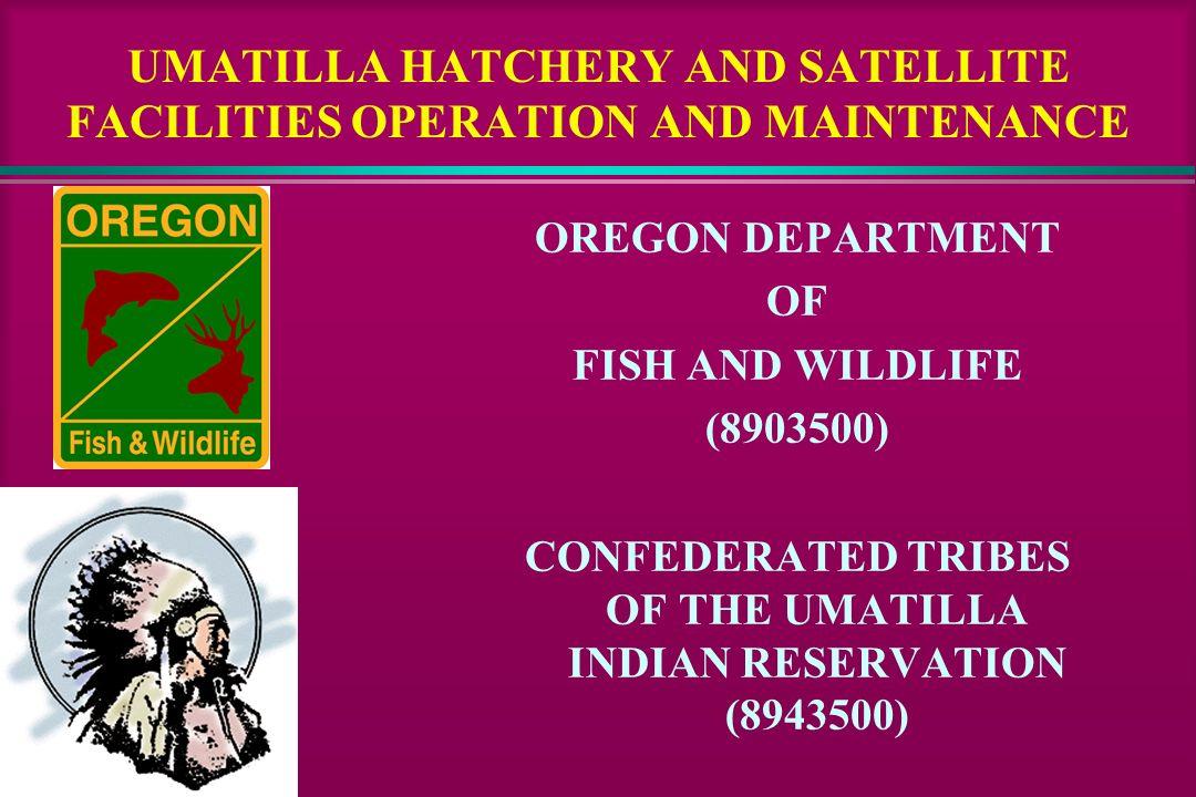 UMATILLA HATCHERY AND SATELLITE FACILITIES OPERATION AND MAINTENANCE