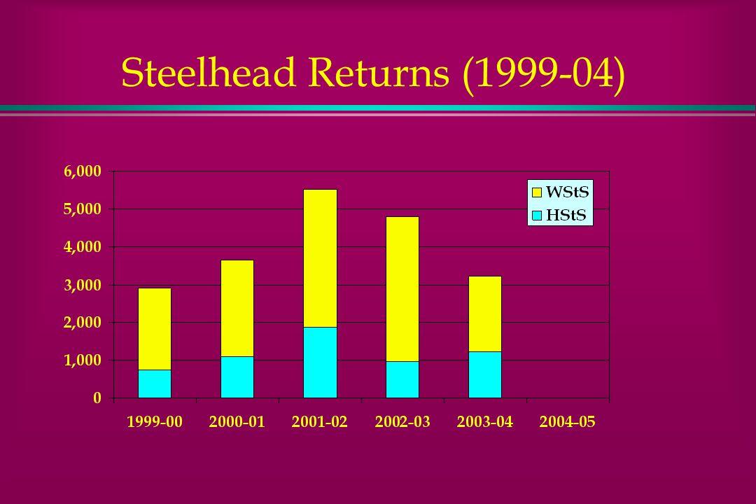 Steelhead Returns (1999-04)