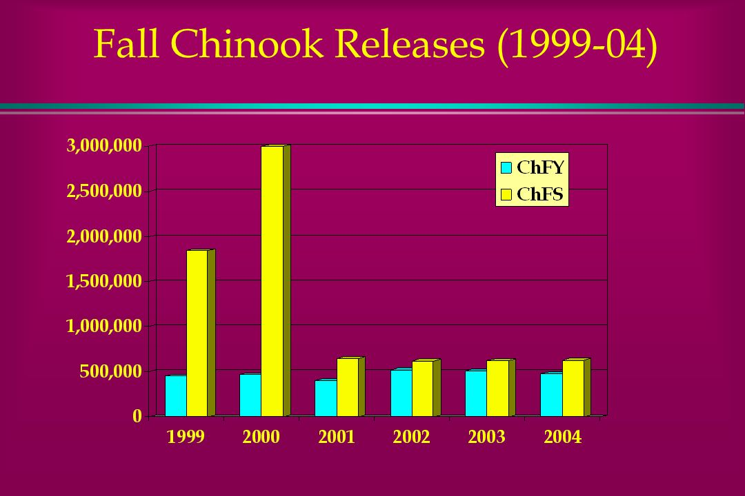 Fall Chinook Releases (1999-04)