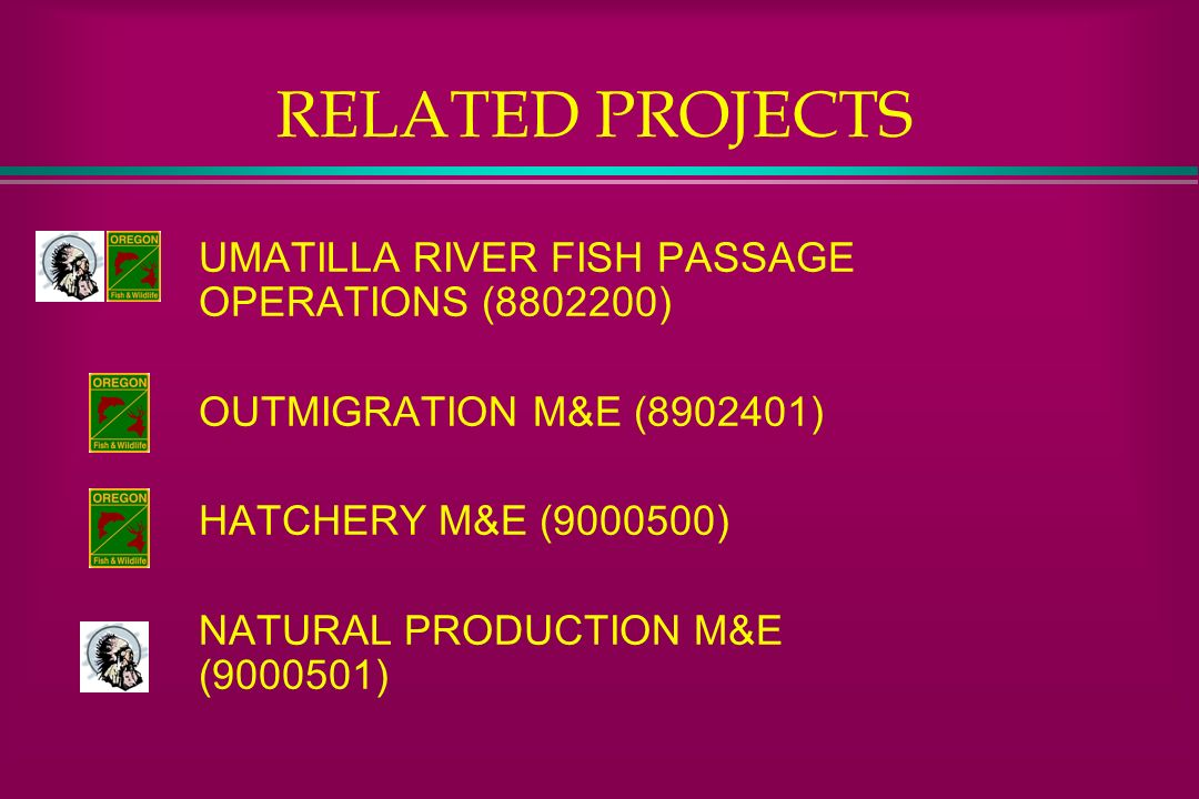 RELATED PROJECTS UMATILLA RIVER FISH PASSAGE OPERATIONS ( )
