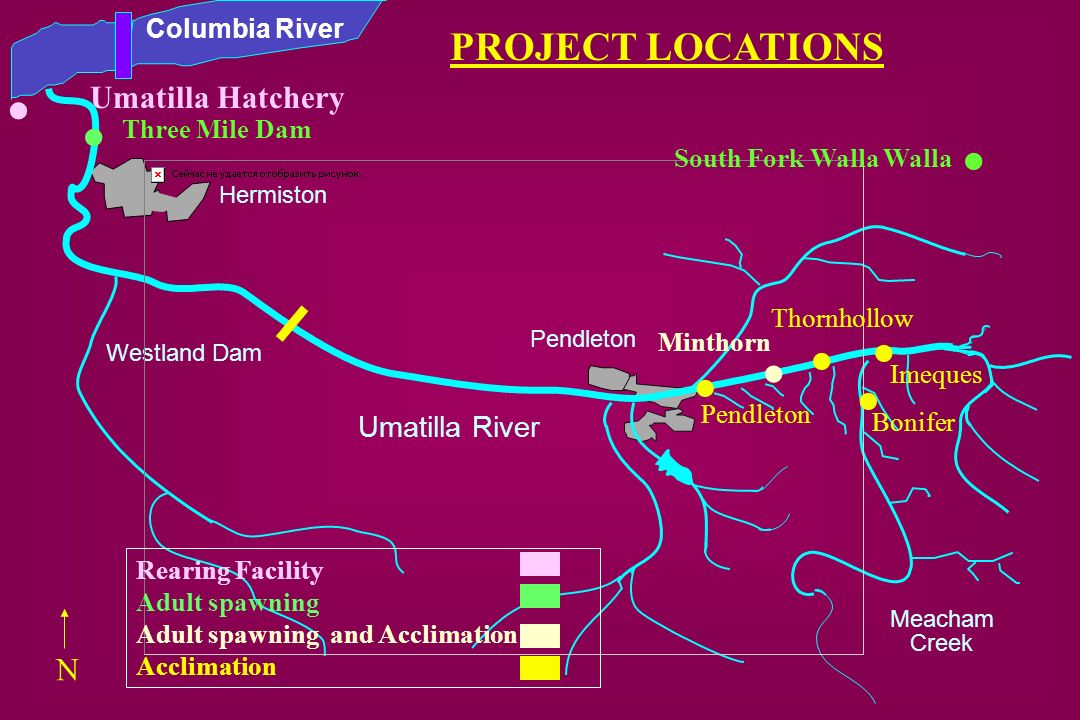 . . . . . . . . PROJECT LOCATIONS Umatilla Hatchery N Umatilla River