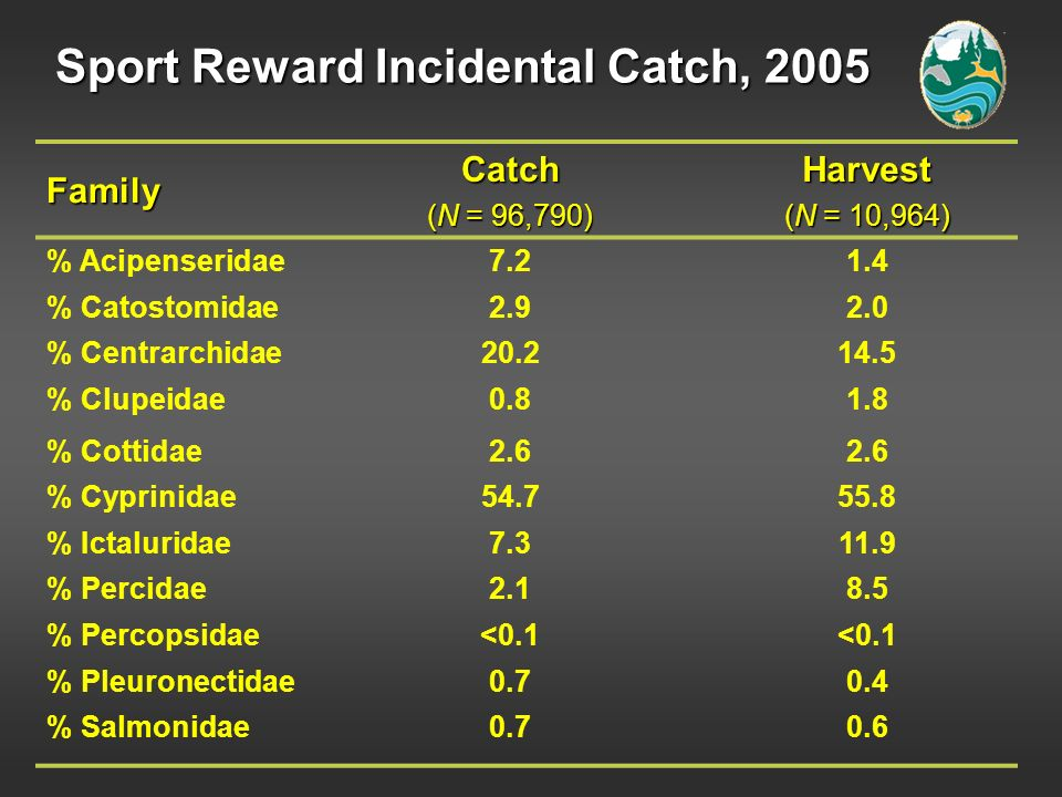 Sport Reward Incidental Catch, 2005