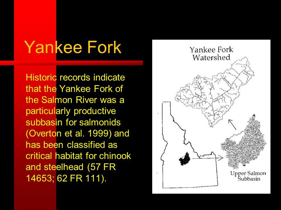 Yankee Fork